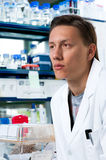 Young scientist in modern lab Royalty Free Stock Photos