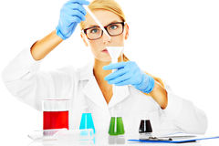 Young scientist Stock Photography
