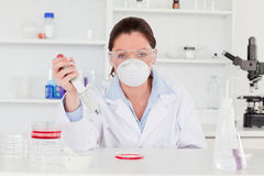 Young scientist preparing a sample Stock Photography