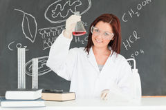Young scientist showing a conical flask Stock Image