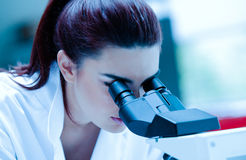 Young scientist using a microscope Royalty Free Stock Images