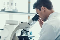 Young Scientist using Microscope in Laboratory royalty free stock image
