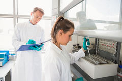 Young scientist using a pipette in chamber Stock Photography