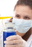 Young scientist woman Stock Image