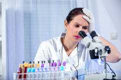 Young scientist woman working at the laboratory Royalty Free Stock Photography