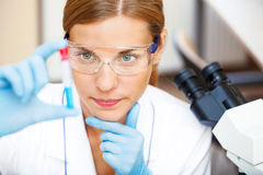 Young scientist working Royalty Free Stock Images