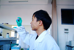 Young scientist working Stock Images