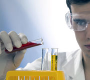 Young scientist working in his laboratory Royalty Free Stock Photography