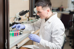 Young scientist working with liquid materials Royalty Free Stock Photo