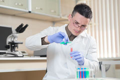 Young scientist working with liquid materials. In test tubes in the laboratory Royalty Free Stock Photo