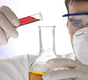 Young scientist working with mask Royalty Free Stock Image
