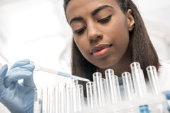 Young scientist working with test tubes and reagents in chemical lab. Low angle view of young scientist working with test tubes and reagents in chemical lab stock images