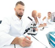 Young scientist works in the lab. Concept of teamwork Royalty Free Stock Photography