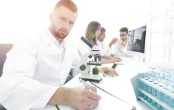 Young scientist works in the lab. Concept of teamwork Royalty Free Stock Image