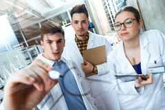 Young scientists carrying out an experiment in a laboratory. Royalty Free Stock Image