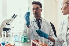 Young Scientists examining Samples in Laboratory. Researchers wearing White Coats Gloves and Protective Glasses examining Chemical Liquid Samples in Flasks Royalty Free Stock Photo