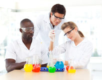 Young scientists examining test-tubes Royalty Free Stock Photo