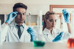 Young Scientists look at Sampes in Laboratory. Researchers wearing White Coats Gloves and Protective Glasses examining Chemical Liquid Samples in Flasks Stock Image