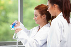 Young scientists pouring liquid in an flask Royalty Free Stock Images