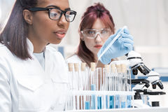 Young scientists working with microscope and test tubes in chemical laboratory Stock Photography