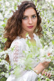 Young seductive brunette Royalty Free Stock Image