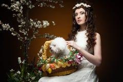 Elegant spring girl Stock Images