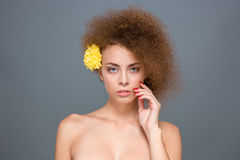 Young sensual curly woman with yellow flower in her hair Stock Image