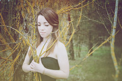 Young sensual woman in wood harmony with nature Stock Photos