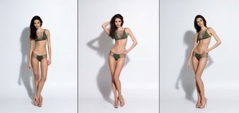 Young, sexy and beautiful women posing in swimsuits Royalty Free Stock Image