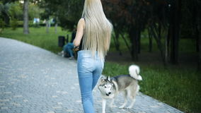 Young sexy blond woman with very long flowing hair is walking in the park with a dog of Husky breed. Young sexy blond woman with very long flowing hair is stock video