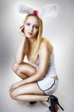 Young sexy blondie woman easter bunny. On gray background. Playgirl Royalty Free Stock Photos