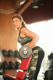 Young sexy brunette woman gym doing biceps exercise with barbell. Young sexy brunette woman in the gym doing biceps exercise with barbell. gym Royalty Free Stock Photos