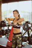 Young sexy brunette woman gym doing biceps exercise with barbell. Young sexy brunette woman in the gym doing biceps exercise with barbell. gym Stock Photos