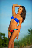 Young sexy and fit bikini model Royalty Free Stock Images