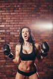 Young sexy girl with boxing gloves, on the Stock Images