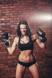 Young sexy girl with boxing gloves, on the Royalty Free Stock Images