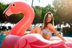 Young and girl having fun and laughing on an inflatable giant pink flamingo pool float mattress in a bikini. Young and girl having fun and laughing on an royalty free stock photography