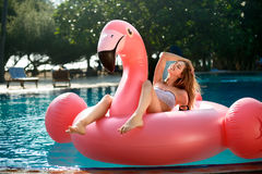 Young and sexy girl having fun and laughing on an inflatable giant pink flamingo pool float mattress in a bikini Royalty Free Stock Photos