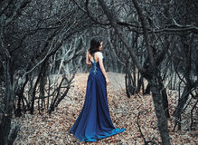 Young girl in long outfit walking on a forest glade. Beautiful brunette in blue lush dress with unusual back,she going forest trail looking back.Luxury stock images