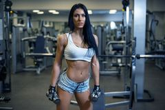 Young sexy girl in a sports gym Royalty Free Stock Photos