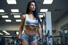 Young sexy girl in a sports gym. Shorts and T-shirt for sports Royalty Free Stock Photo