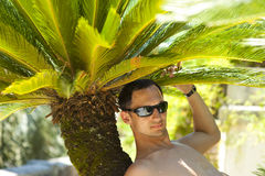 Young sexy man relaxing on tropical resort. Young sexy man sitting and relaxing about palm tree on tropical resort Stock Photos