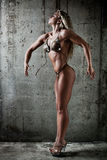 Young sexy muscular woman Royalty Free Stock Photo