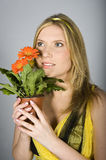 Young  sexy summer woman with orange daisy flowers Stock Photos