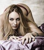 Young sexy woman Stock Photos