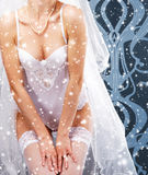 Young sexy woman in erotic lingerie Royalty Free Stock Photos