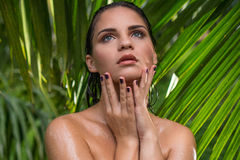 Young sexy woman in jungle during rainy day. Closeup portrait of young sexy woman with wet hair in jungle during rainy day over palm trees background Royalty Free Stock Photo
