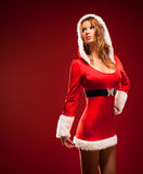 Young woman in santa clothing Stock Image