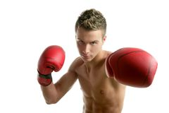 Young shaped man boxing Royalty Free Stock Images