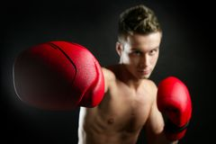 Young shaped man boxing Stock Images